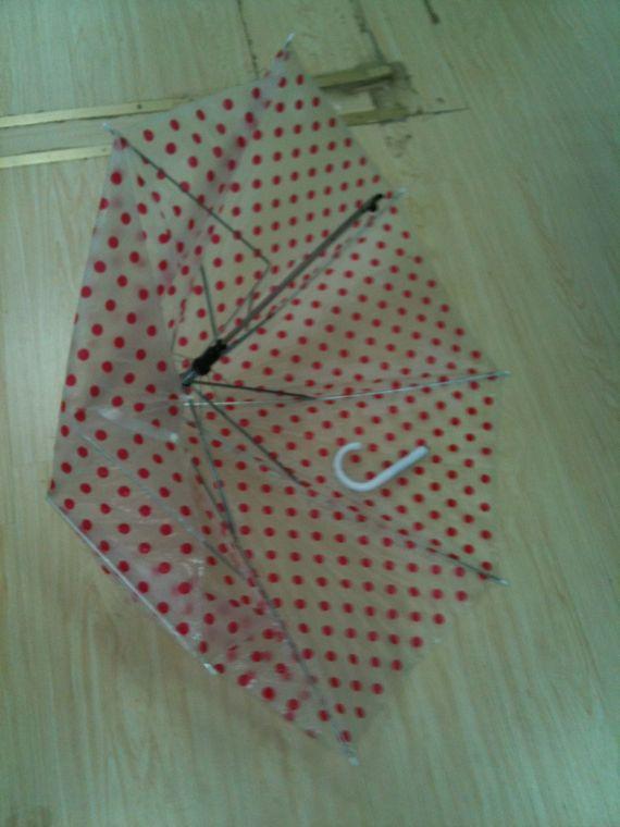 Pièce à conviction : parapluie favori fracassé sur l'individu chapardeur